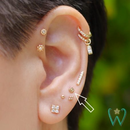 Wish and Whim Jewelry, 14KY 2.5mm Square Dot Stud Earring, Curated Ear 1