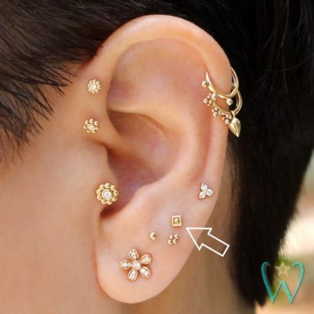 Wish and Whim Jewelry, 14KY 2.5mm Square Dot Stud Earring, Curated Ear 2
