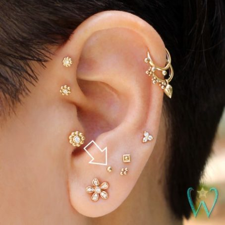 Wish and Whim Jewelry, 14KY 2mm Ball Stud Earring, Curated Ear 2