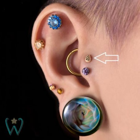 Wish and Whim Jewelry, 14KY Beaded Teardrop Stud Earring, Curated Ear 1