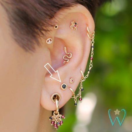Wish and Whim Jewelry, 14KY Rose Cut Black Diamond, on Ear 1